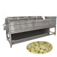scew type potato peeling machine