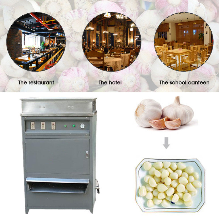 Automatic Garlic Peeling Machine Application