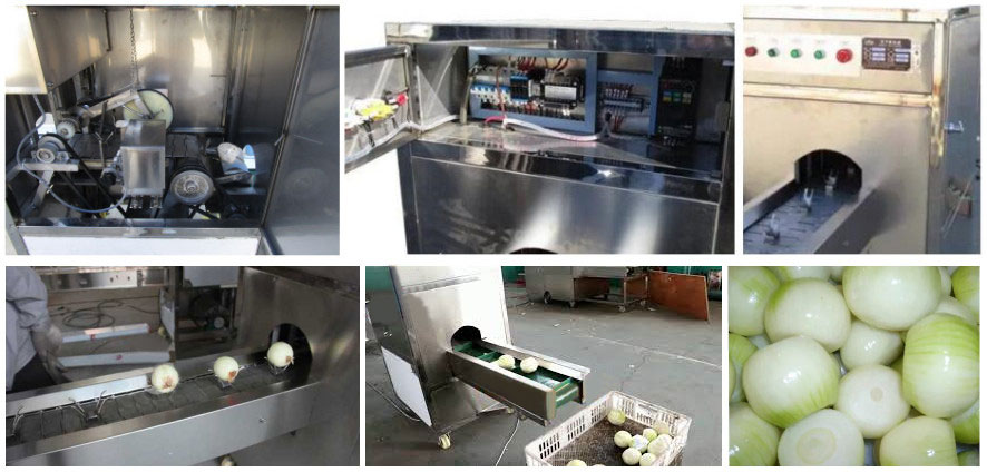 Automatic Onion Root Cutting Machine Features