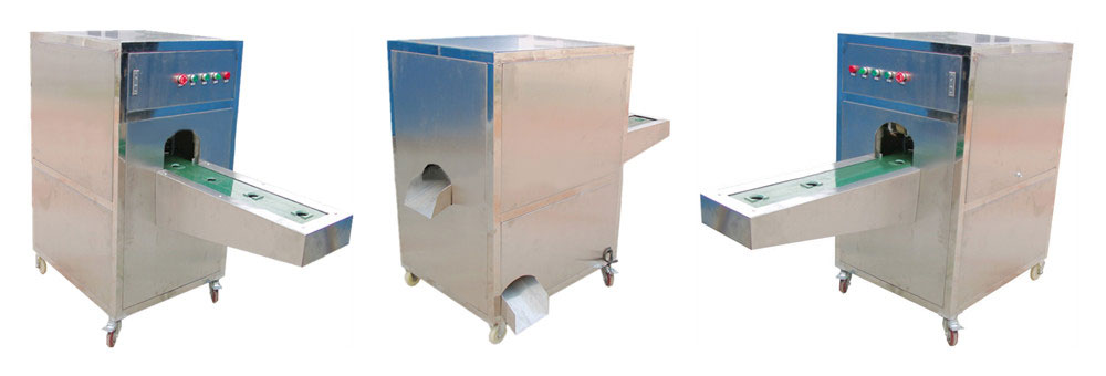 Automatic Onion Root Cutting Machine Introduction