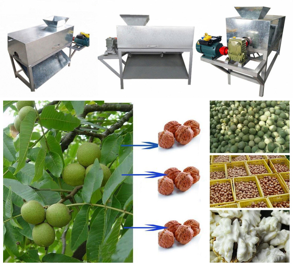 Green Walnut Peeling and Cleaning Machine Structures