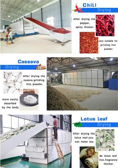 Mesh Belt Food Drying Machine Applications