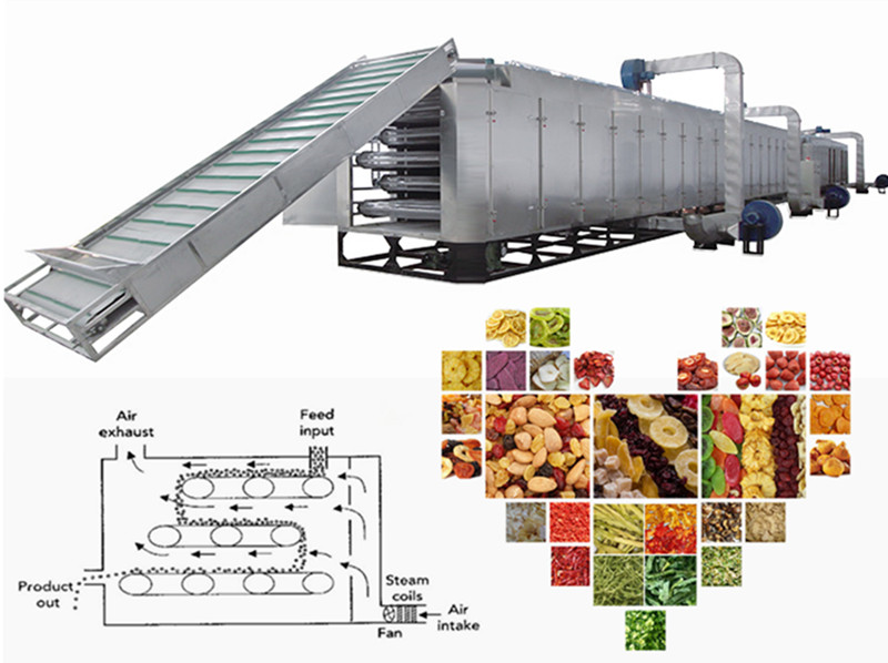 Mesh Belt Food Drying Machine Introduction