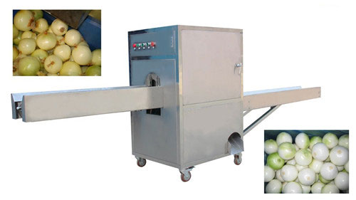 Onion Roots Cutting Machine