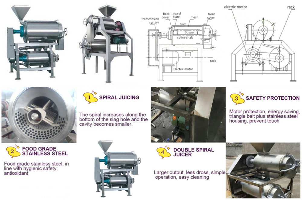 Tomato Paste Production Line Features