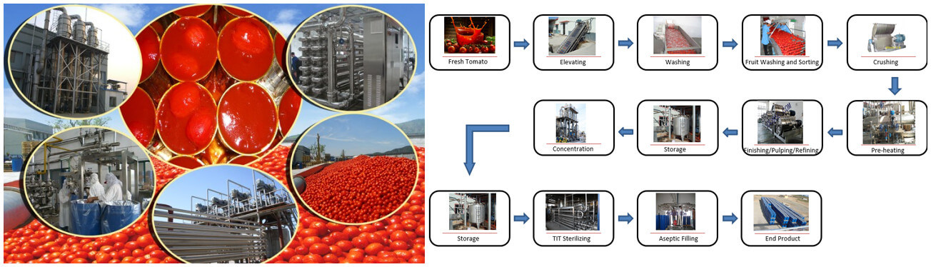 Tomato Paste Production Line Introduction