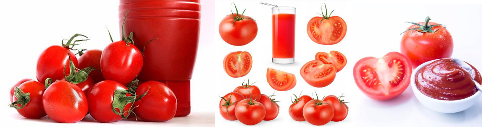 Tomato and Paste