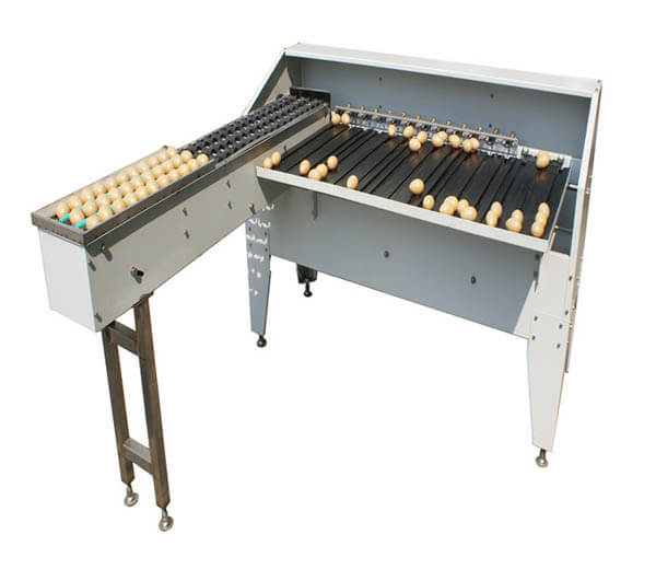 automatic egg grader machine