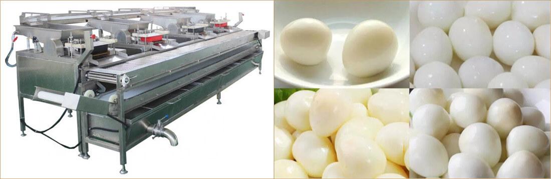 automatic quail egg shelling equipment application
