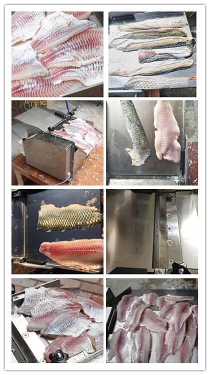 electric fish skinner