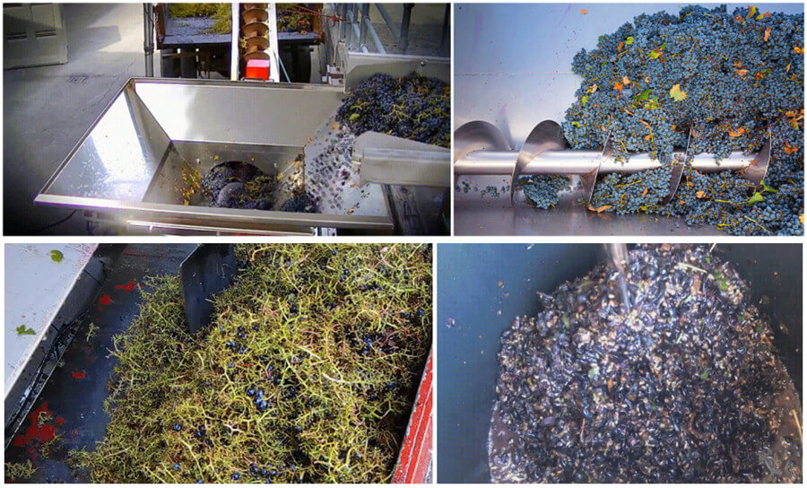 grape stem removing and crushing process