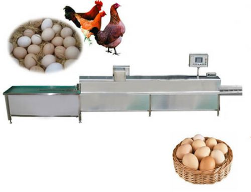 Industrial Chicken Egg Washing Machine
