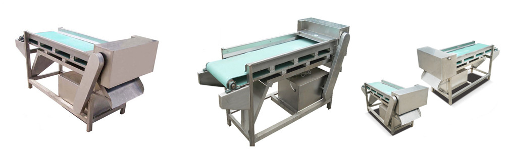 mushroom slicing machine introduction